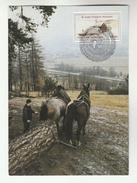 UN Vienna  FDC (maximum Card  HORSES PULLING LOG,  UN ANNIV Stamps Cover United Nations Horse Tree - Horses