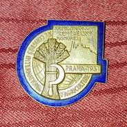 INTERNATIONAL CONGRESS OF AGRICULTURE PRAGUE PRAG 1931. RARE VINTAGE BIG BADGE - Badges