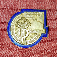 INTERNATIONAL CONGRESS OF AGRICULTURE PRAGUE PRAG 1931. RARE VINTAGE BIG BADGE - Pin's