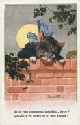 CHAT - CAT - KATZE - CHATS HABILLES - ILLUSTRATEUR; DONALD MAC GILL  - édit; BARNES - N° 2695  . - Katten