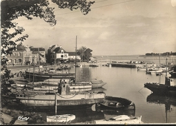 Cpsm Gf -   LE CROISIC -  Bassin Du Perthuy Du Roy  155 - Le Croisic