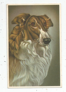Cp , CHIEN , COLLEY , écrite 1963 , Ed : Coloprint N° 52452 - Hunde