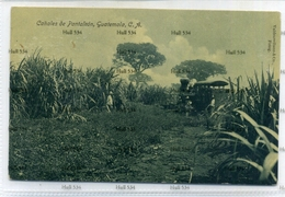 Guatemala Central America Canales De Pantaleon With Steam Railway Locomotive 1910s Postcard 08 71652 Valdeavellano - Guatemala