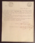 GOVERNO PONTIFICIO BOLOGNA 14/8/1843 NASCITA SOC. RAFFAELLO RIZZOLI & C. CANAPE E GARGIOLI CON FIRME AUTOGRAFE - Manoscritti