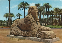 Egypt - Memphis - The Alabaster Sphinx.  # 02216 - Sculptures