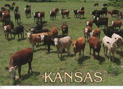 Kansas - EEUU - Kansas City – Kansas