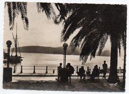 SAINTE MAXIME SUR MER--1955--Coucher De Soleil (animée) Cpsm 15 X 10 N°2349 éd Mar-Collec Suder Libr - Sainte-Maxime