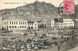 Ref R782- Yemen - Camel Market - Aden - Marché Aux Chameaux  - - Yémen