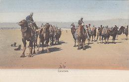 Caravanne - Persische Ansichtskarte     (A32-150217) - Iran