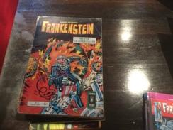 Frankenstein 17 - Frankenstein