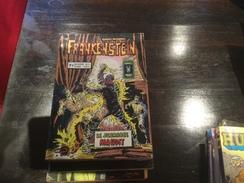 Recueil Frankenstein (15 & 16) - Frankenstein