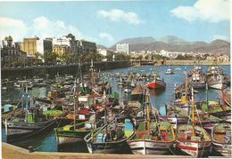 V314 Ceuta - Puerto Pesquero - Barche Boats Bateaux / Non Viaggiata - Ceuta