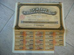 Le Maroc Agricole & Commercial Action Privilégiée De 100F 1926 - Agriculture
