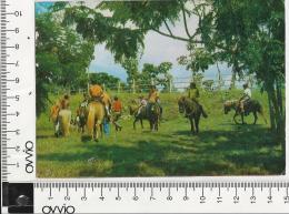 CUBA)1975 LA HAVANA Parque Lenin Viaggiata - Cartoline