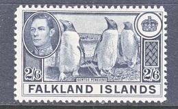 FALKLAND  ISLANDS  93  *   FAUNA  GENTOO  PENGUINS - Falkland Islands