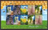 Bosnia And Herzegovina 2013 Flora, Flowers, Bee, Honey Plants, Mini Sheet Of 2 Sets MNH - Honeybees