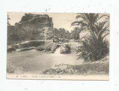 Cp , TUNISIE , GABES , Cascade Et Rocher De SCHELLA , Vierge - Tunisie
