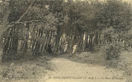 CPA  (62) MERLIMONT PLAGE Le Bois De Sapins    (b Bur) - Francia