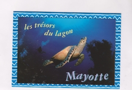 CPM MAYOTTE, - Mayotte