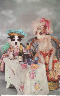 Chiens Habillés, Champagne, Kitsch, Non écrite, 2 Scans - Dogs