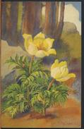 °°° 3303 - A. HALLER - FIORI FLOWERS FLORES - 1937 °°° - Haller, A.
