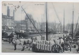 BELGIQUE - ANVERS Le Quai Flamand - Antwerpen
