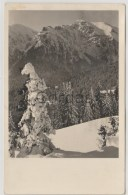 Romania - Brasov - Cabana De Ski - Skihutte - Alpinisme