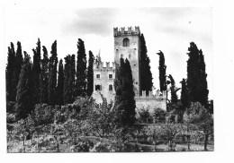 CONEGLIANO - IL CASTELLO NV FG - Treviso