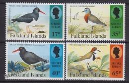 Falkland Islands 1995 Yvert 650-53, Birds Of The Littoral - MNH - Islas Malvinas