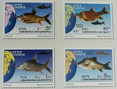 Ethiopia Ethiopie Äthiopien - Complete Set Of 4 MNH / ** 2017 Fauna Fishes Marine Life - Etiopía