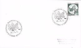 23747. Carta VERONA (Italia) 1990. Herbora Idroterme. Vegetal Botanic - 6. 1946-.. Repubblica