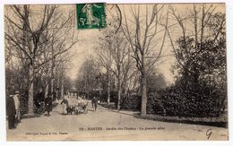 Nantes. Jardin Des Plantes. La Grande Allée. (1339) - Nantes