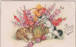 Animaux : Chat  , Bonne  Fête - Chats