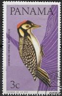 PANAMA 1965 Birds -  3c. - Woodpecker Sp.  FU - Panama