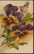 °°° 3361 - RAPHAEL TUCK - FLOWERS FIORI - 1905 °°° - Tuck, Raphael