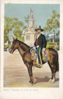 Mexico Caballero en traje de Charro Typical Horseman
