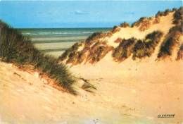 CPM - 62 - Vue Des Dunes - Frankrijk