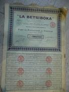 Madagascar - La Bestiboka - Part De Fondateur Au Porteur 1929 - Afrique