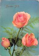 Carte Postale Semi-moderne - Fleurs - Rose - Bonne Fête - Phantasie