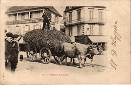 LOURDES (65) - Gros Plan Pharmacie LENCELLE - CERILLE COUFFEUR - Attelage Boeufs Très Belle Carte Postée - Lourdes