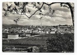 AREZZO PANORAMA VIAGGIATA  FG - Arezzo