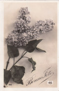 Carte Postale Ancienne Fantaisie - Fleurs - Lilas -  Bonne Fête - Fantaisies