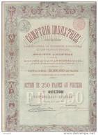 ACTION DE 250 FRANCS -COMPTOIR INDUSTRIEL - ANNEE 1887  TB - Actions & Titres