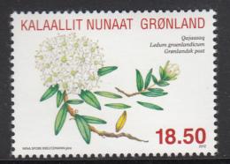 Greenland MNH 2012 Scott #609 18.50k Labrador Tea - Greenlandic Herbs - Alimentation