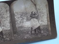 """DOES YOU LOVE ME HUN ? """" Stereo Photo R.Y. YOUNG """" 1898 ( Voir Photo Pour Detail ) !! - Photos Stéréoscopiques"""