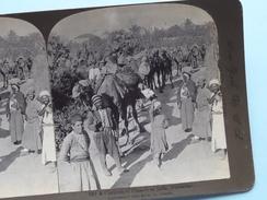 """A CARAVAN Of CAMELS At JAFFA, PALESTINE"""" Stereo Photo R.Y. YOUNG """" 1901 ( Voir Photo Pour Detail ) !! - Photos Stéréoscopiques"""