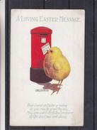 Grande Bretagne - Carte Postale - Boîte Aux Lettres - Pussins - - England