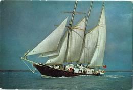 Postcard Sail Training Ship Sir Winston Churchill Sailing Boat - Sailing Vessels