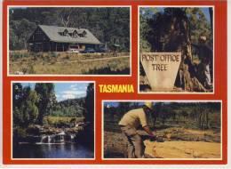 TASMANIA - Isle Of Beauty, Multi View W. Pencil Pine Lodge And Falls, Post Office Tree, Cider Gum Logging - Australia