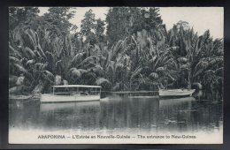 OCEANIE - PAPOUASIE- NOUVELLE GUINEE  - ARAPOKINA - L'Entrée En Nouvelle Guinée - The Entrance To New Guinea - Papua New Guinea